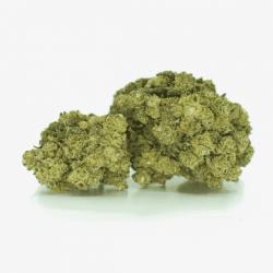 Hierbasanta-  AMNESIA CBD 27%- 1gr